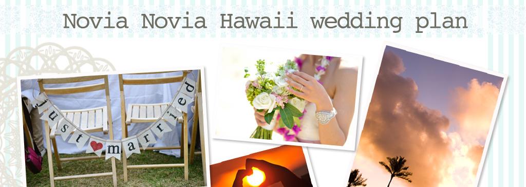 一度訪れたら誰もが魅了され、何度も訪れたくなる場所、それがハワイ。「いつか大切な人と、ハワイでウェディングが挙げられればいいな…」novia novia weddingではその想いを形にしたいと、オリジナルのハワイウェディングパックをご用意しました。真っ青な海と空、輝く緑、力強い大地の息吹、ハワイならではの空気を感じながら大切なウェディングを挙げてみませんか?